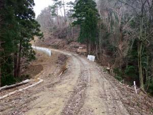道路わきの木々伐採により道幅は広く感じます。