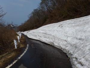 佐渡縦貫線の残雪