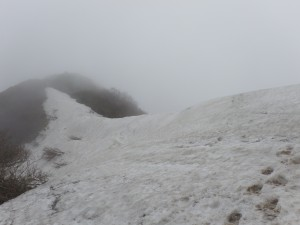 稜線の残雪(縦走路)
