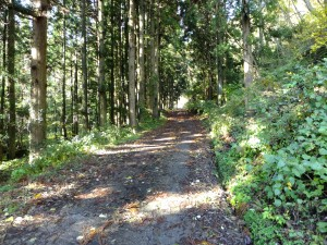 和木集落から約2km