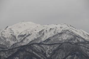 金北山山頂付近