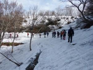 縦貫線は除雪がされていません。要注意!