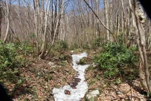 登山道の残雪