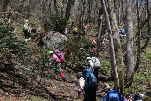 登山道は多くの登山者で賑わっていました。