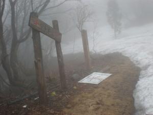 アオネバ十字路