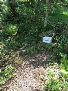 下山の方は左に進んでください。